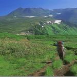 【第7山】白雲岳2,230m「展望第一の山」