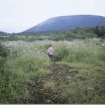 【第12山】大室山 1468m「ブナ林の方舟」