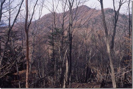 【第30山】蟻ヶ峰1979m「有名になり損ねた山」