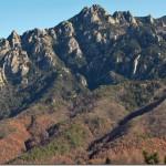 【第39山】魔子(まこ) 1,700m「美少女と怪人」