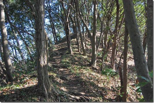 【第41山】森戸川源流エリア「三浦最後の秘境」