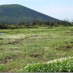 【第47山】蔵王山 1,841m「殿は忘れずの山」