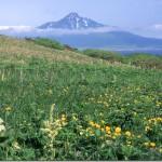 【第52山】利尻山1721m 「北の果ての特異点」