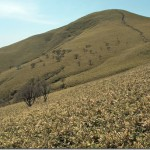 【第89山】御在所岳1212m、竜ヶ岳1099m「鈴鹿の山々①」
