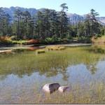 【第95山】高天原 約2,100m「ニッポン最奥の仙境」