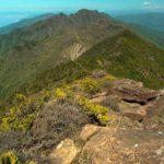 【第113山】東赤石山 約1,707m「水割りを片手に」