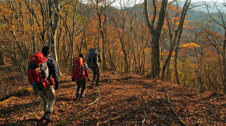 【第122山】菰釣山(こもつるしやま)1,379m「静寂の西丹沢」