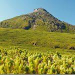 【第153山】羅臼岳1,661m(北海道・知床半島)「遥かなる島を眺めて」