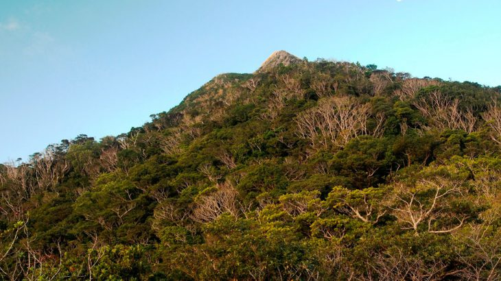 【第166山】与那覇岳 503m、嘉津宇岳 452m(沖縄県)静寂の山頂と人気の山頂と