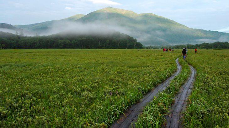 【第182山】 至仏山2,228メートル(栃木県・群馬県)上り専用、下りは禁止