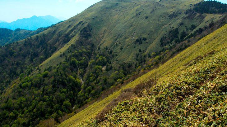 【第183山】 笹ヶ峰 1,860メートル(愛媛県・高知県)四国の笹の殿堂