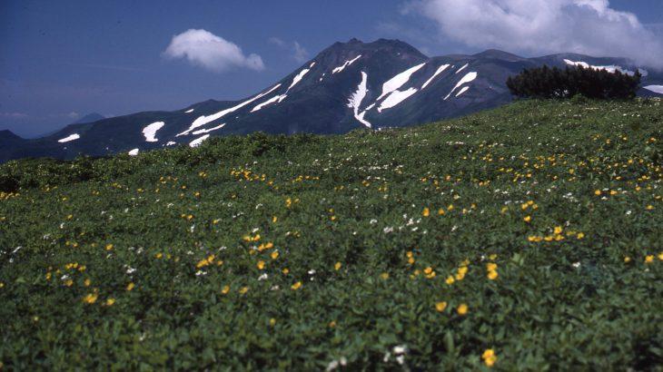 【193山】トムラウシ山 2,141メートル(北海道)真逆のイメージ
