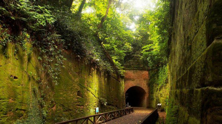 【第202山】猿島40メートル(神奈川県)数奇な運命を辿った山